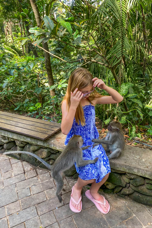 Bali with Kids - Moments before these guys started to bite