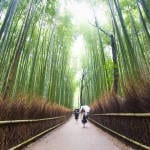 Japan: Kyoto to Hiroshima, a Ten Day Journey