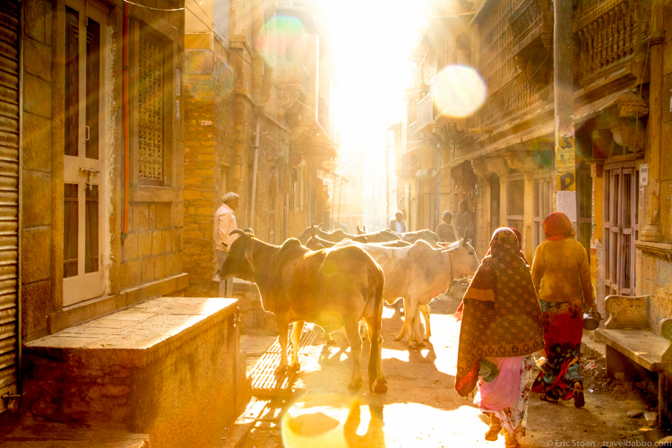 Bucket List - Walking around Jaisalmer, India early in the morning