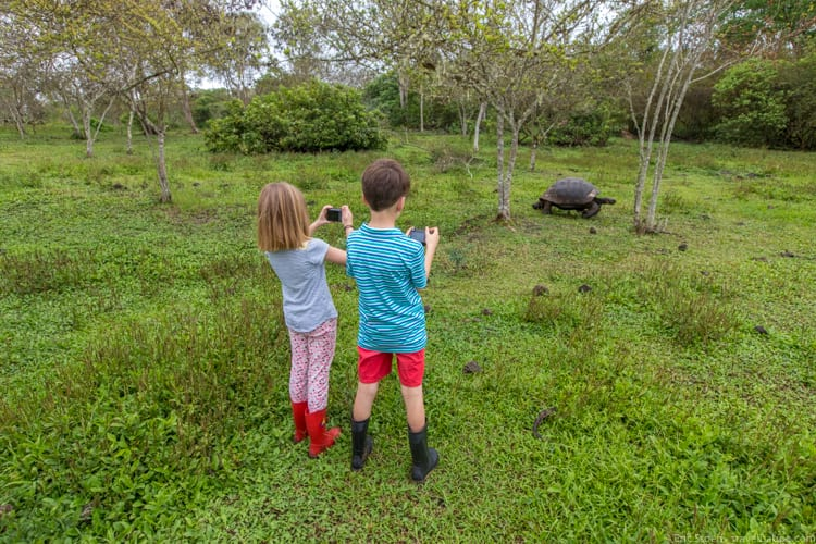 Galapagos with Kids - Photographing tortoises