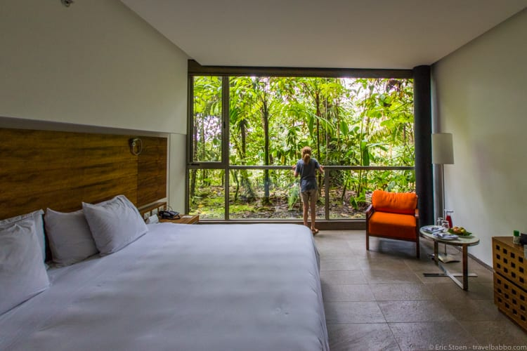 Mashpi Lodge - Looking for animals from one of our rooms