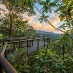 Mashpi Lodge: An Extraordinary Adventure in Ecuador's Cloud Forest