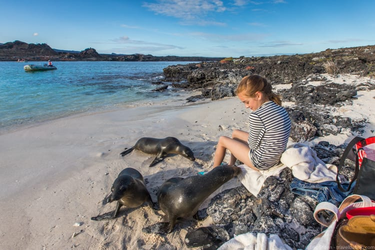 Where to go in South America - Up close in the Galapagos!