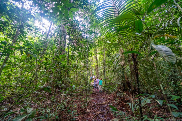 Amazon Rain Forest with Kids - hiking