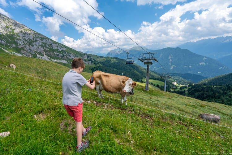 Dolomites with kids: You can't pass a cow without taking a picture...