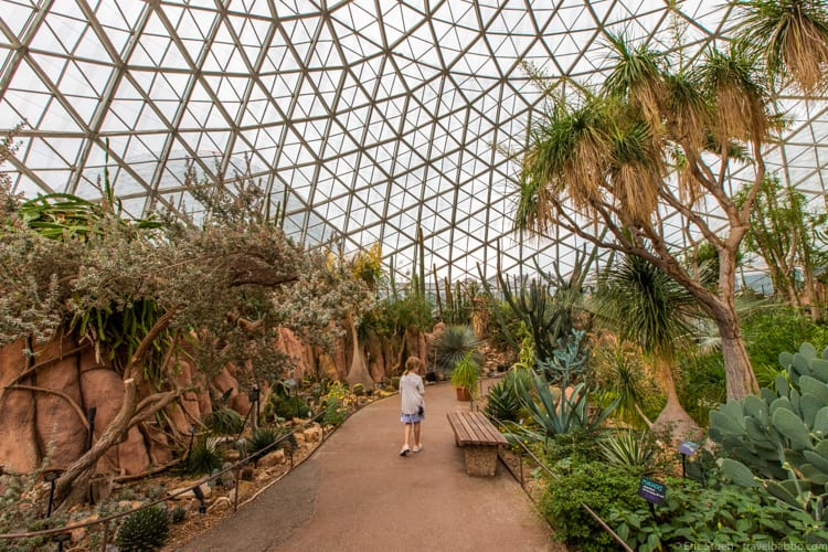 Milwaukee with kids - In the Desert Dome