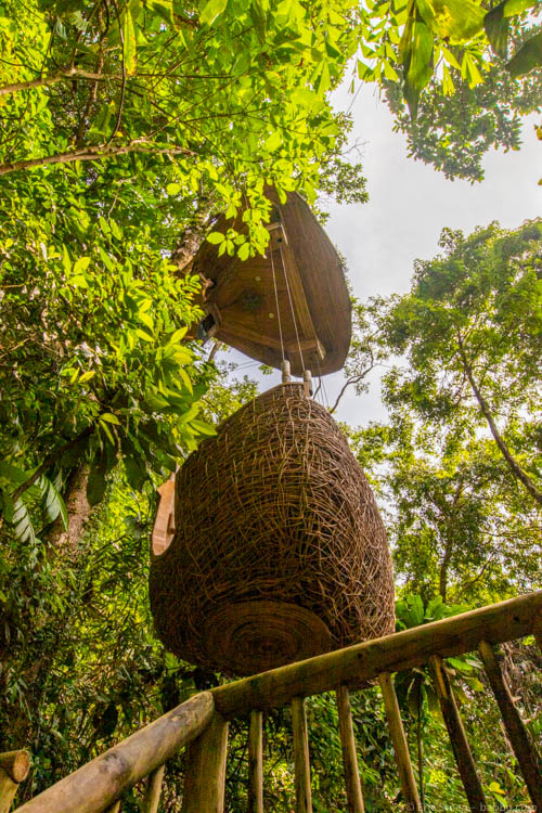 Soneva Kiri - The tree pod from below