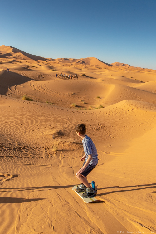 Morocco with Kids - Sand boarding...with a camel caravan in the distance