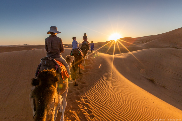 Morocco with Kids - On camels in the Sahara. NBD.