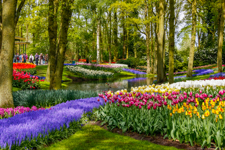 Favorite countries - Netherlands - Keukenhof Gardens outside Amsterdam