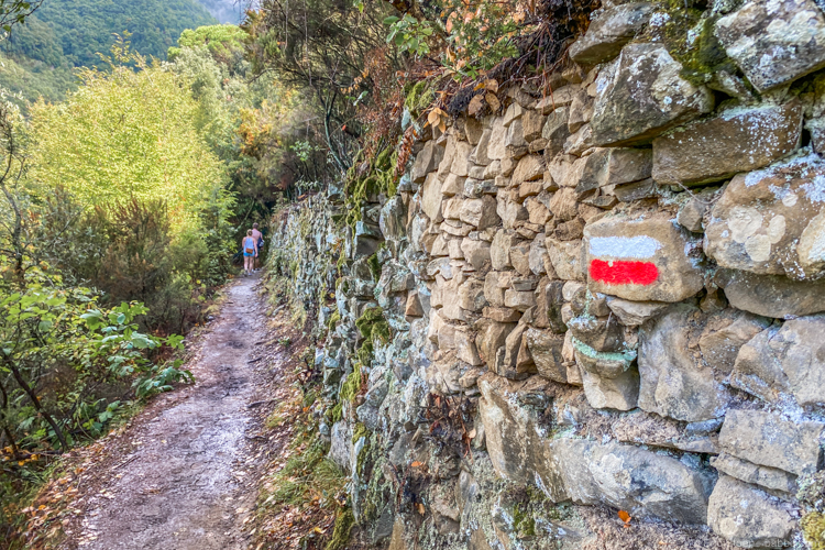 Cinque Terre - Trail N. 586. The entire trail system is marked with the red and white blazes you see here.